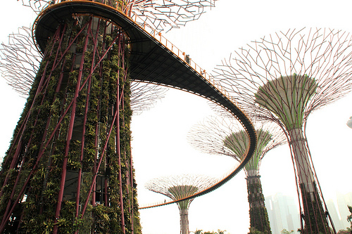 Подвесной мост. Gardens by the Bay, Singapore