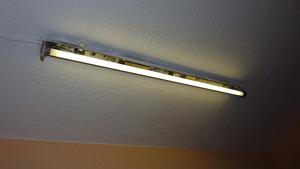 лампы флуоресцентные фото